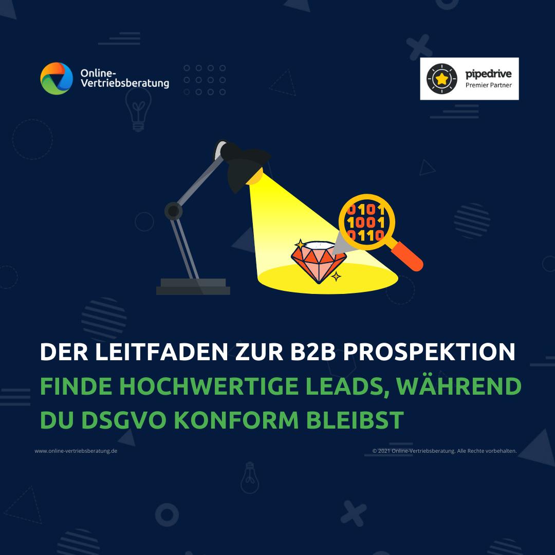 Online-Vertriebsberatung - Bild für den kostenlosen Leitfaden zur B2B Prospektion